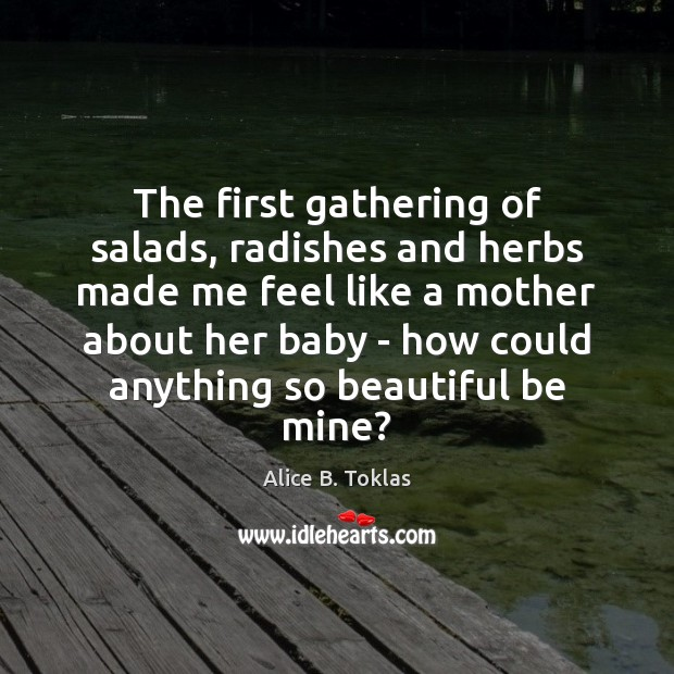 The first gathering of salads, radishes and herbs made me feel like Image