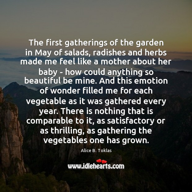 Image, The first gatherings of the garden in May of salads, radishes and