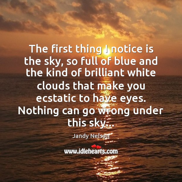 The first thing I notice is the sky, so full of blue Jandy Nelson Picture Quote