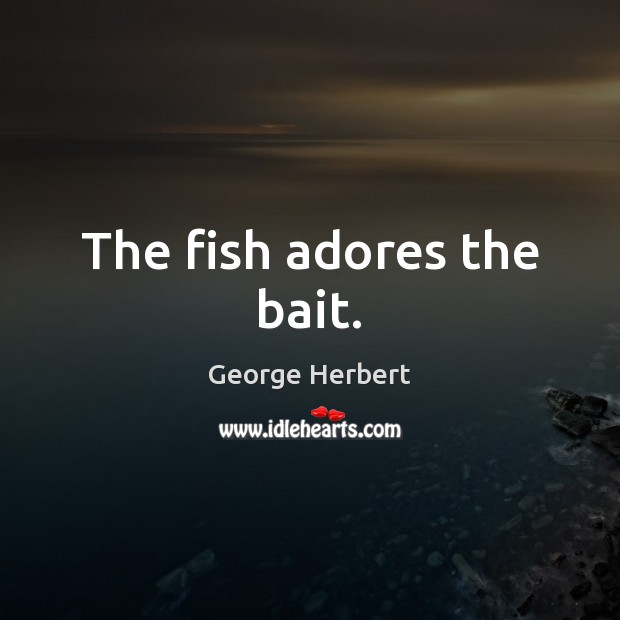 Image, The fish adores the bait.