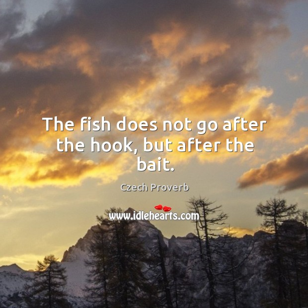 The fish does not go after the hook, but after the bait. Czech Proverbs Image
