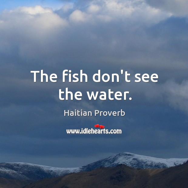 The fish don't see the water. Haitian Proverbs Image