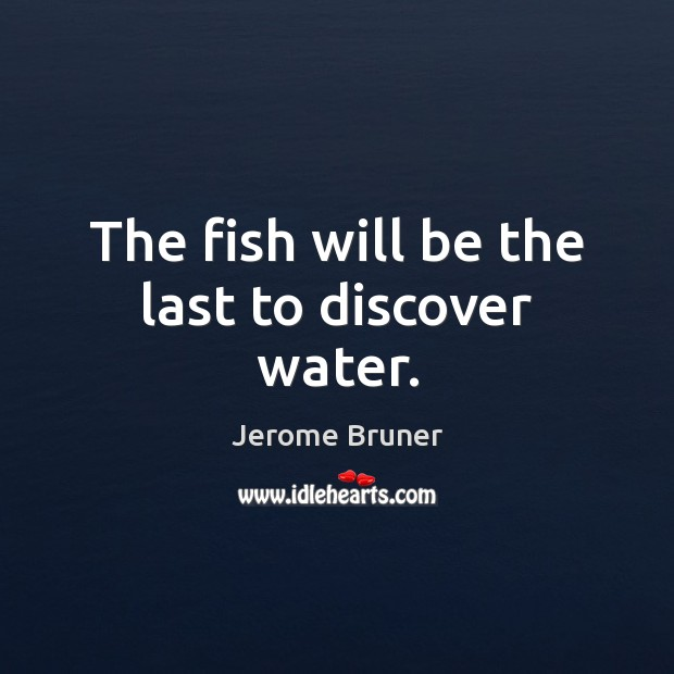 Image, The fish will be the last to discover water.