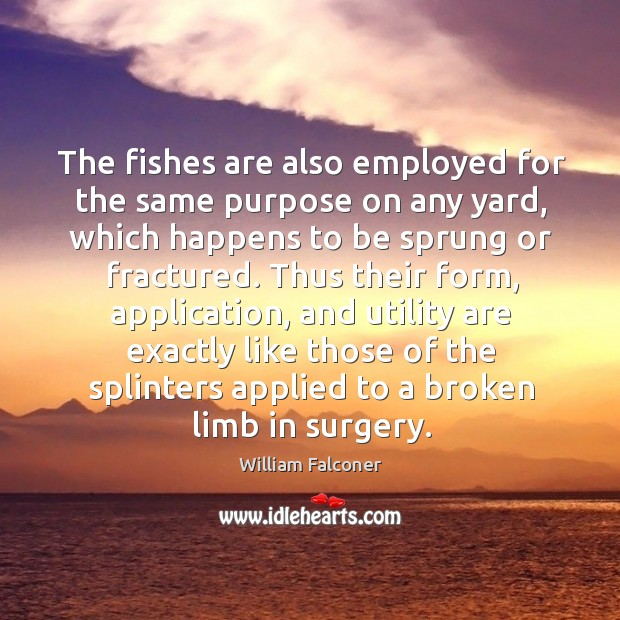 Image about The fishes are also employed for the same purpose on any yard, which happens to be sprung or fractured.