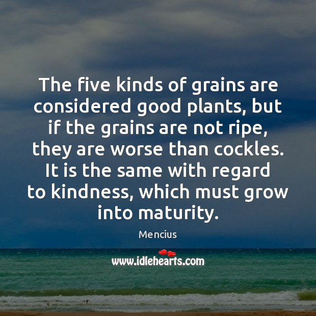The five kinds of grains are considered good plants, but if the Mencius Picture Quote