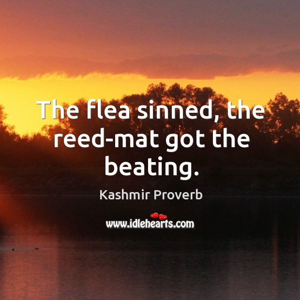 The flea sinned, the reed-mat got the beating. Kashmir Proverbs Image