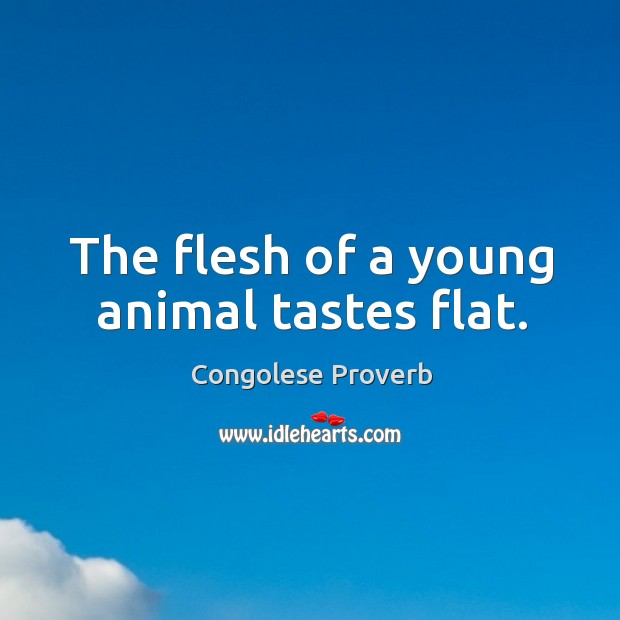 The flesh of a young animal tastes flat. Congolese Proverbs Image