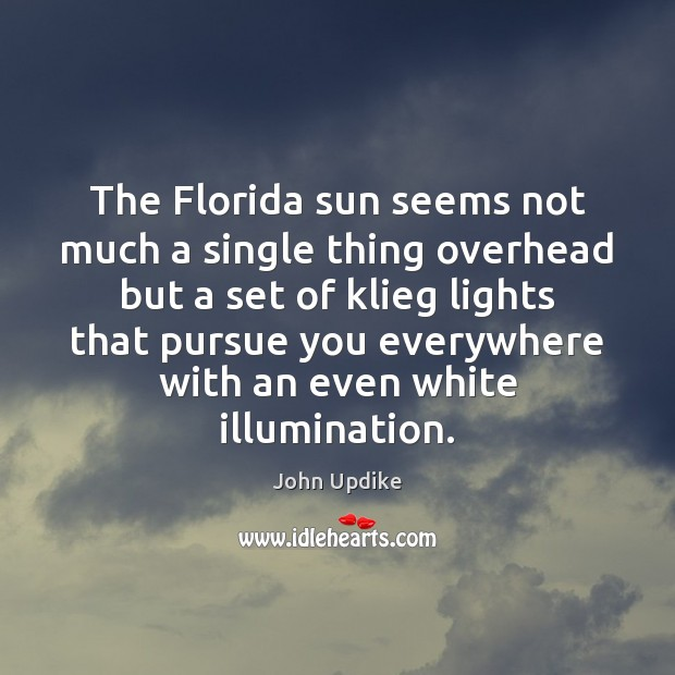 The Florida sun seems not much a single thing overhead but a Image