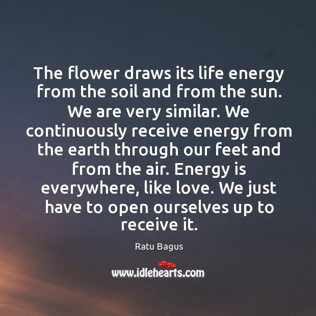 Ratu Bagus Picture Quote image saying: The flower draws its life energy from the soil and from the