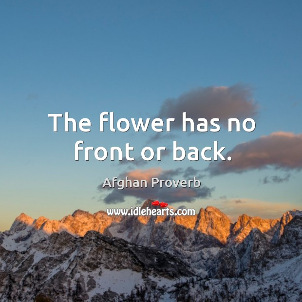 The flower has no front or back. Afghan Proverbs Image