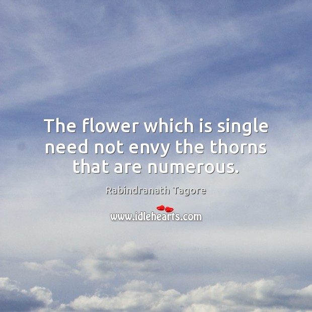 Image, The flower which is single need not envy the thorns that are numerous.