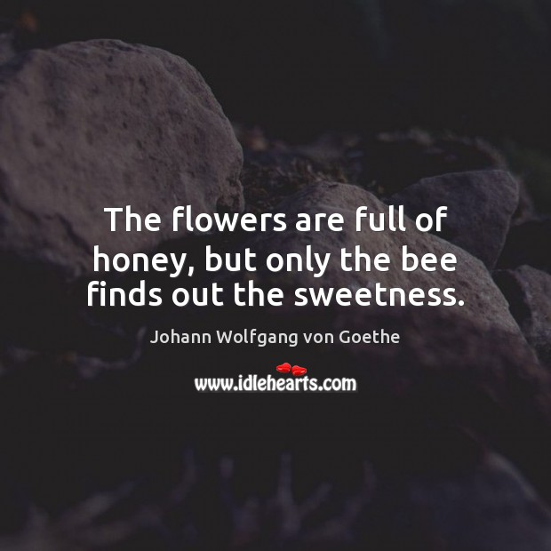 The flowers are full of honey, but only the bee finds out the sweetness. Johann Wolfgang von Goethe Picture Quote