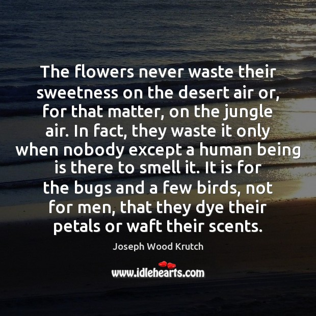 The flowers never waste their sweetness on the desert air or, for Joseph Wood Krutch Picture Quote