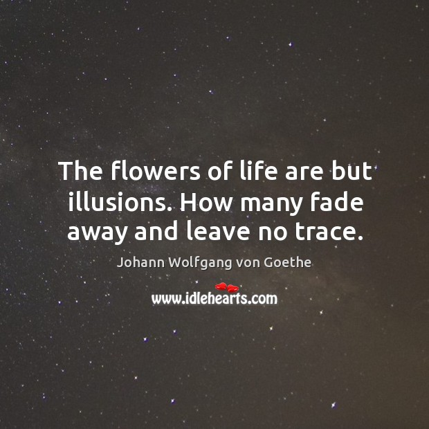 The flowers of life are but illusions. How many fade away and leave no trace. Image