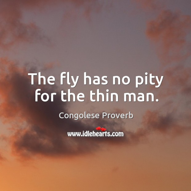 The fly has no pity for the thin man. Congolese Proverbs Image