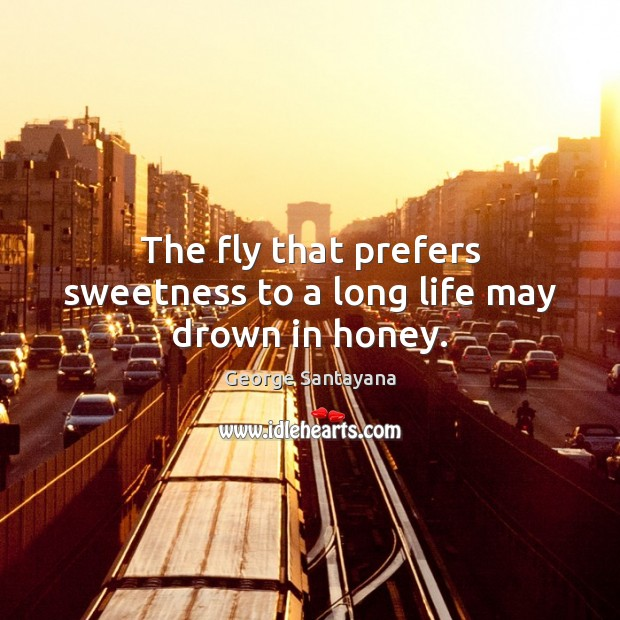 The fly that prefers sweetness to a long life may drown in honey. Image