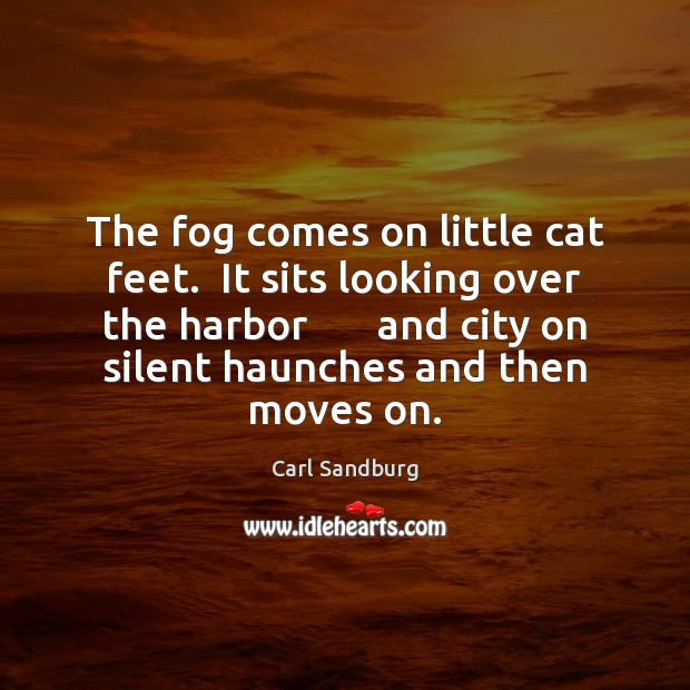 The fog comes on little cat feet.  It sits looking over the Carl Sandburg Picture Quote