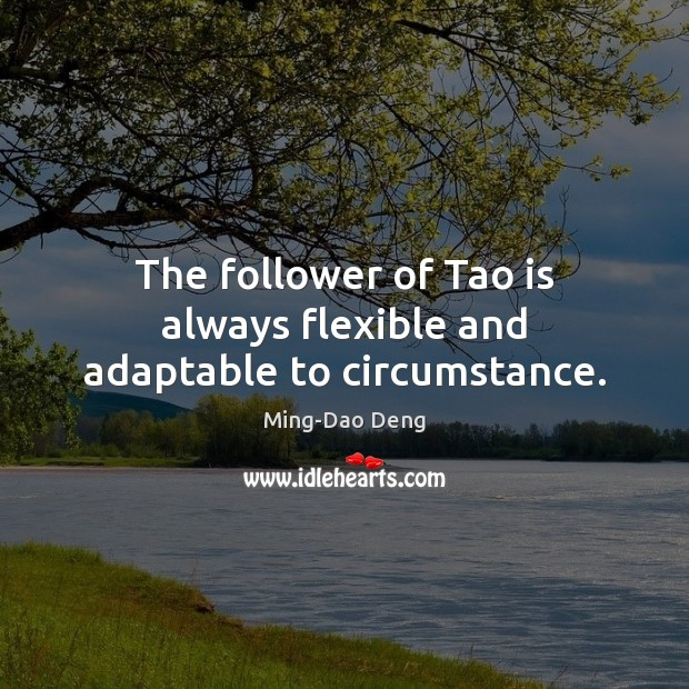 The follower of Tao is always flexible and adaptable to circumstance. Image