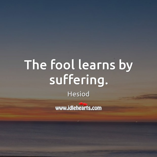 Image, The fool learns by suffering.