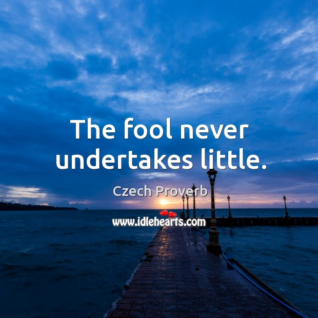 The fool never undertakes little. Czech Proverbs Image
