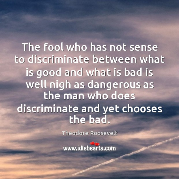 Image, The fool who has not sense to discriminate between what is good