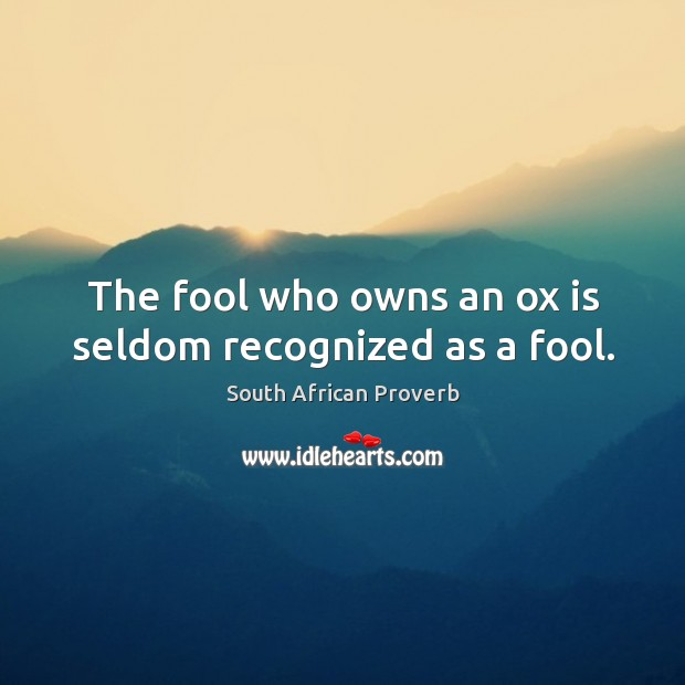 The fool who owns an ox is seldom recognized as a fool. Image