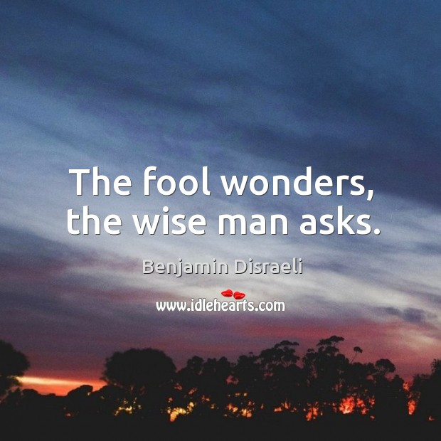 Image, The fool wonders, the wise man asks.