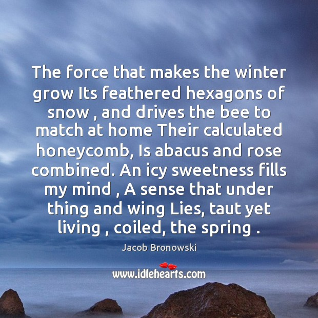 The force that makes the winter grow Its feathered hexagons of snow , Winter Quotes Image