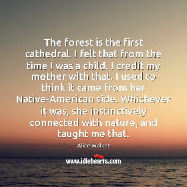 Image, The forest is the first cathedral. I felt that from the time