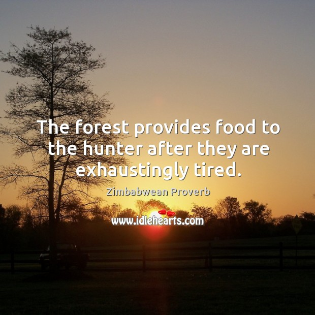 The forest provides food to the hunter after they are exhaustingly tired. Zimbabwean Proverbs Image
