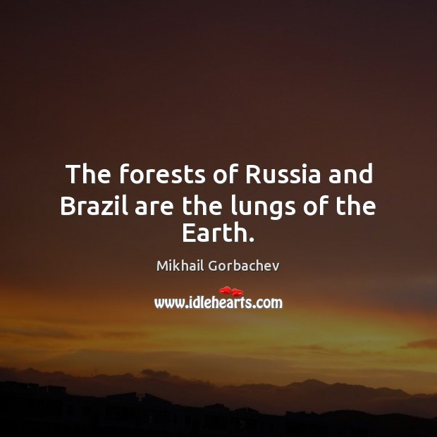 Image, The forests of Russia and Brazil are the lungs of the Earth.