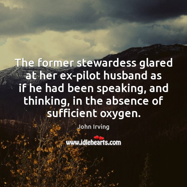 The former stewardess glared at her ex-pilot husband as if he had John Irving Picture Quote
