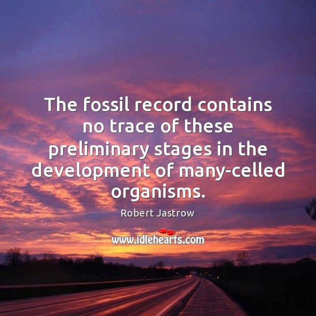 Image, The fossil record contains no trace of these preliminary stages in the