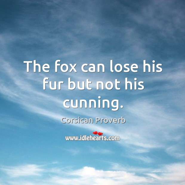 Image, The fox can lose his fur but not his cunning.