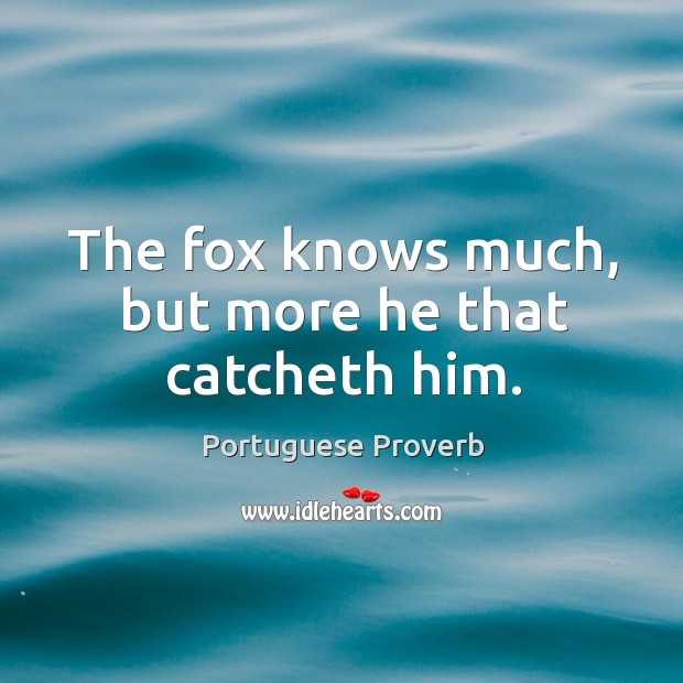The fox knows much, but more he that catcheth him. Image