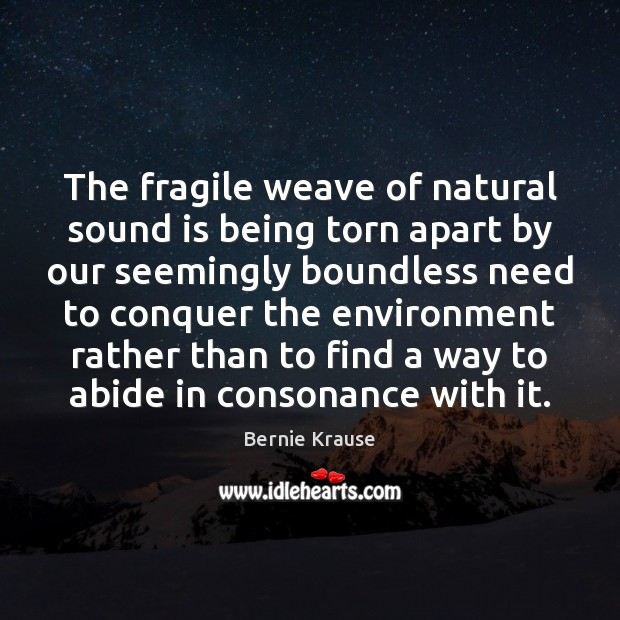Image, The fragile weave of natural sound is being torn apart by our