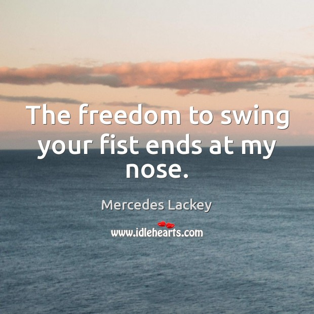 The freedom to swing your fist ends at my nose. Image