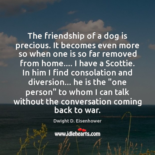 Image, The friendship of a dog is precious. It becomes even more so