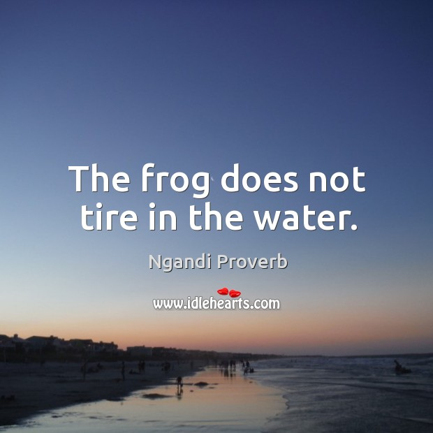 The frog does not tire in the water. Ngandi Proverbs Image