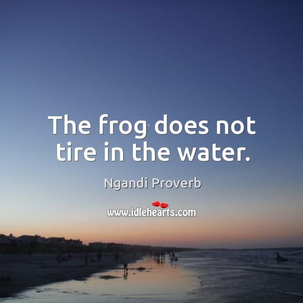 Ngandi Proverbs