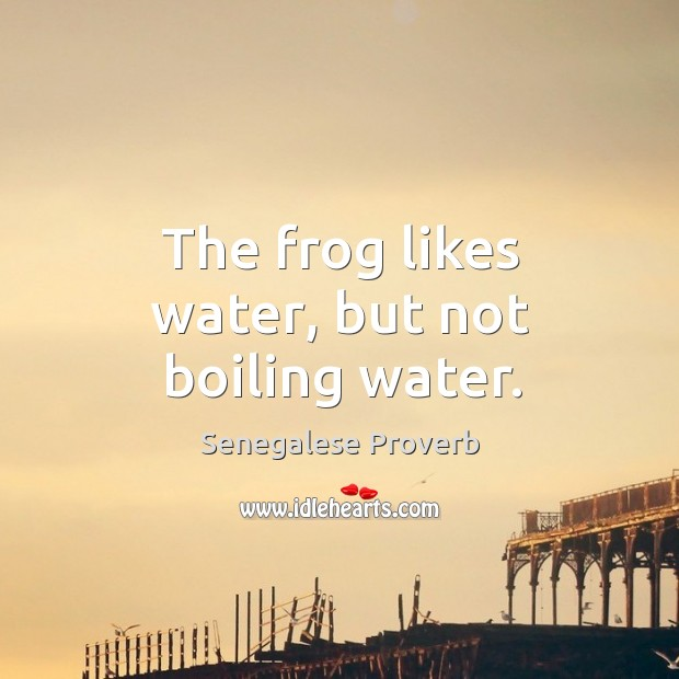 The frog likes water, but not boiling water. Senegalese Proverbs Image
