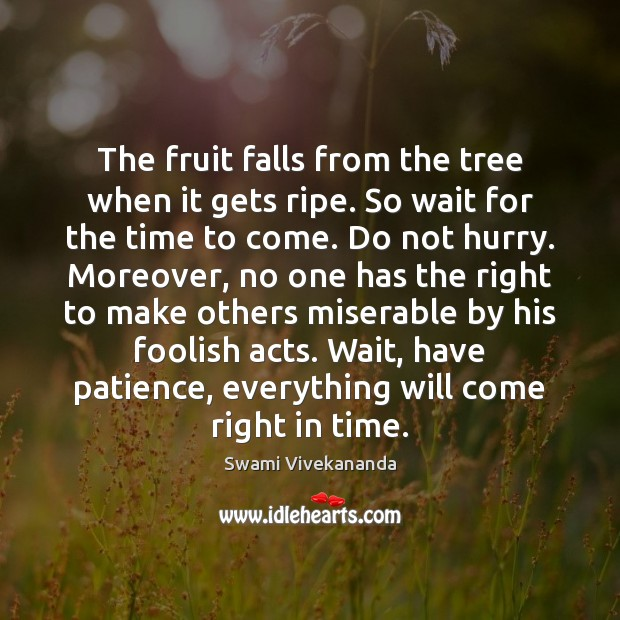 The fruit falls from the tree when it gets ripe. So wait Image