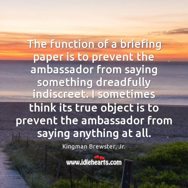 The function of a briefing paper is to prevent the ambassador from Image