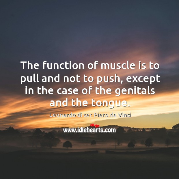 The function of muscle is to pull and not to push, except in the case of the genitals and the tongue. Image