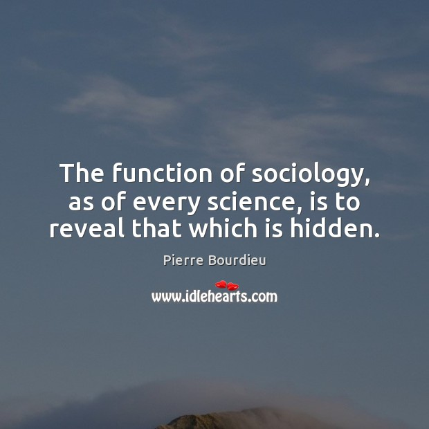 The function of sociology, as of every science, is to reveal that which is hidden. Image