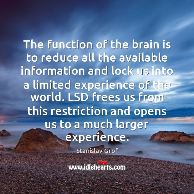 The function of the brain is to reduce all the available information Stanislav Grof Picture Quote