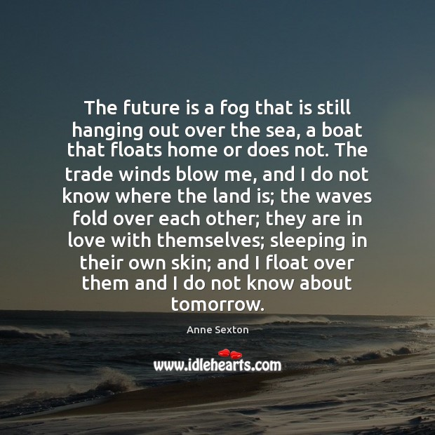 The future is a fog that is still hanging out over the Anne Sexton Picture Quote