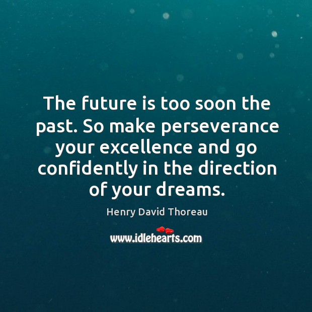 The future is too soon the past. So make perseverance your excellence Image