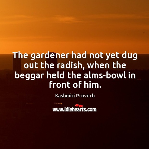 The gardener had not yet dug out the radish Kashmiri Proverbs Image