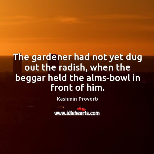 The gardener had not yet dug out the radish Kashmiri Proverbs Image